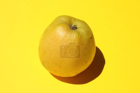 Photo for Ripe yellow apple on yellow background - Royalty Free Image
