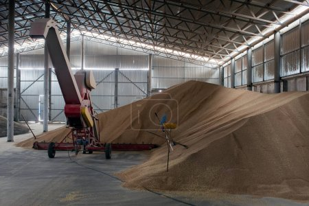 warehouse, a shed for storing grain crops