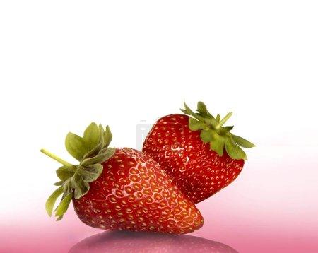 Photo pour Deux fraises sur rose, Bavière, Allemagne, Europe - image libre de droit