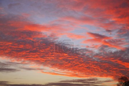 Photo for Scenic view of Dramatic sky at sunset, Oberalsterniederung nature reserve, Tangstedt, Schleswig-Holstein, Germany, Europe - Royalty Free Image
