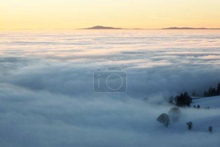 Photo pour Grand brouillard dans la vallée du Rhin avec vue sur les Vosges, depuis Schauinsland, Forêt Noire, Bade-Wrttemberg, Allemagne, Europe - image libre de droit