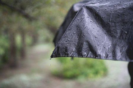 Photo pour Serrer les gouttes de pluie sur la surface du parapluie pendant la pluie, macro-tir - image libre de droit