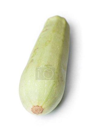 Single damaged squash vegetable marrow zucchini isolated on white background