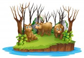 Bear on isolated island illustration