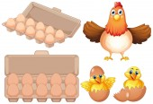 Set of fresh egg and chicken illustration