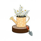 Decoration for the garden a bouquet of field daisies in a vase of watering can on the stump Vector