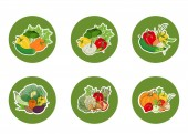 Set of stickers icons of vegetables on a round green background Vector