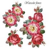 """Постер, картина, фотообои """"Букет из роз. Набор цветов акварель красных роз"""""""