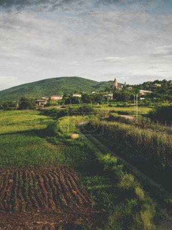 beau champs verdoyants et collines près du village de Géorgie