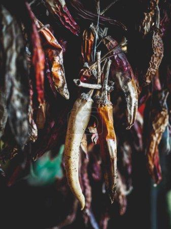 Photo pour Foyer sélectif de piments séchés biologiques accrochés à des fils sur le marché géorgien - image libre de droit
