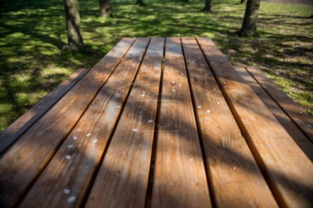 Photo for Empty wooden table with white petals in park, copenhagen - Royalty Free Image