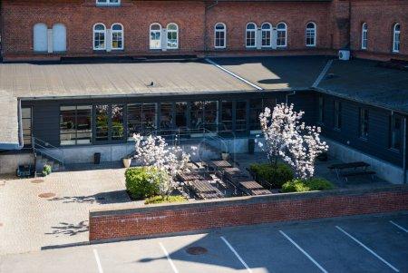 Photo pour Vue d'angle élevé d'yard confortable avec des bancs et des arbres fleurs, Copenhague, Danemark - image libre de droit