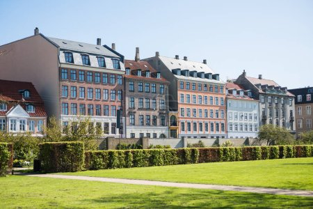 beautiful green lawn with bushes and old houses in copenhagen, denmark