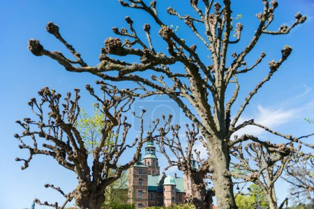 view through bare trees at beautiful famous Rosenborg castle at sunny day, Copenhagen, Denmark