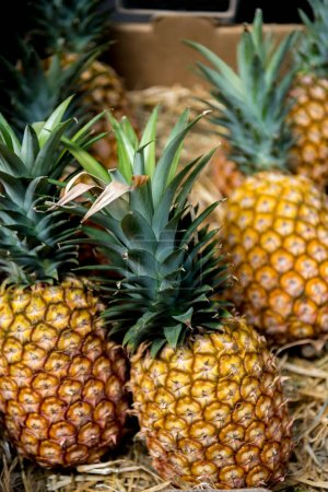 selective focus of pineapples in cardboard box