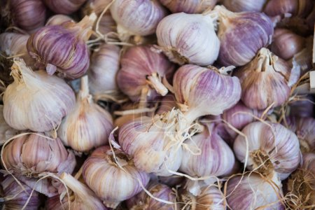 Photo for Full frame image of pile garlics background - Royalty Free Image