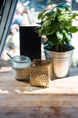 close up view of plant with leaves in bucket on table with shadow and sunlight in cafe