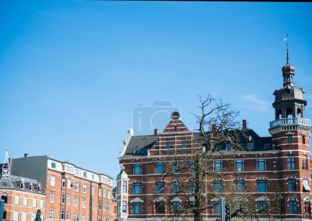 Photo for Cityscape with tree and buildings under bright blue sky in Copenhagen, Denmark - Royalty Free Image