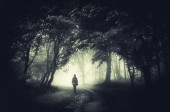 Man walking on dark forest path. Surreal landscape with trees in mist