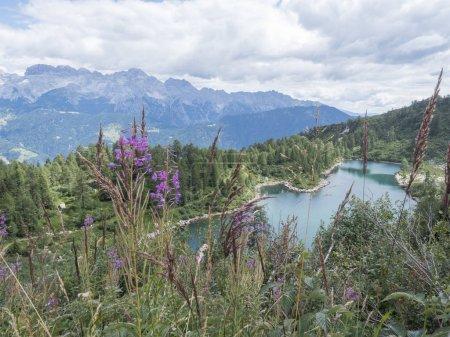 Photo pour 2018 augurst 15 san giuliano lacs, de la Trentin jour trekking pays sur montagne - image libre de droit