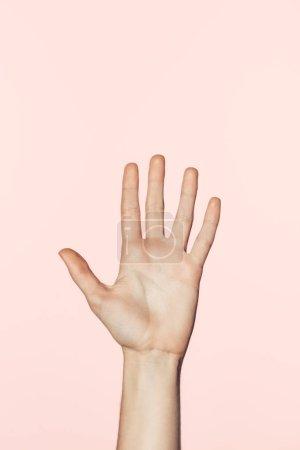 Photo pour Vue partielle de la main féminine isolé sur fond rose - image libre de droit