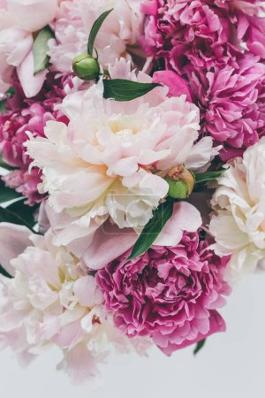 Photo for Top view of beautiful pink peony flowers background - Royalty Free Image