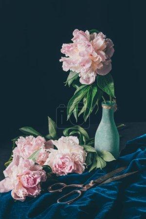 bouquet of light pink peonies in vase with scissors on dark background