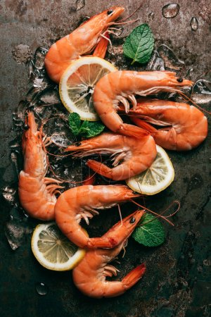 Photo for Top view of shrimps, lemon slices and mint leaves with melting ice - Royalty Free Image