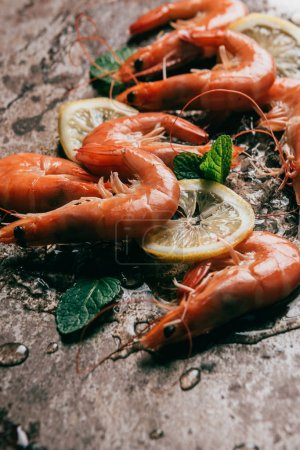 Photo for Closeup view of shrimps, lemon slices and mint leaves with melting ice - Royalty Free Image