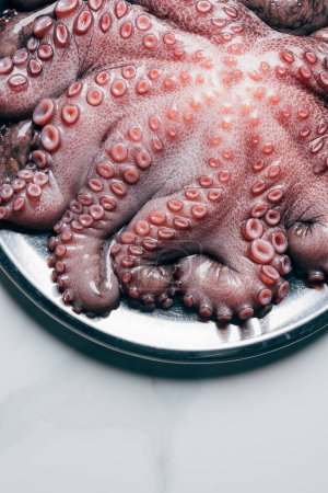 top view of octopus in metal plate on light marble surface