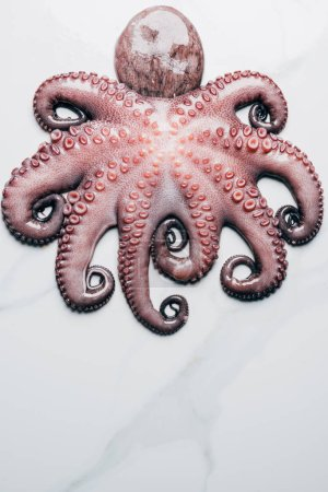 top view of big uncooked octopus on light marble surface