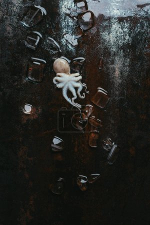 top view of small octopus with ice cubes on rusty metal surface