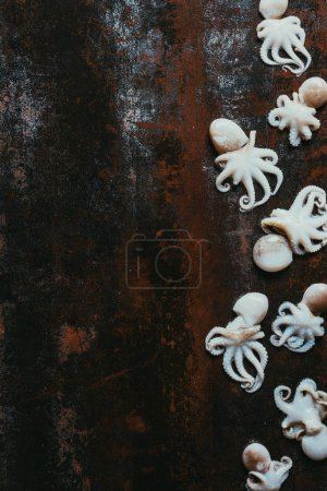 top view of raw little octopuses on rusty metal surface with copy space