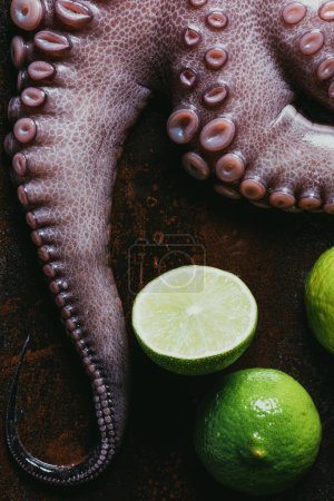 top view of raw octopus tentacles with limes on rusty surface