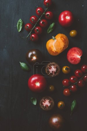 top view of black prince tomatoes and cherry tomatoes with basil leaves on black wooden background
