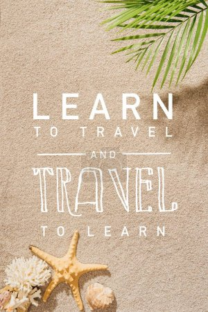"top view of palm branch over sandy beach with ""learn to travel and travel to learn"" lettering"