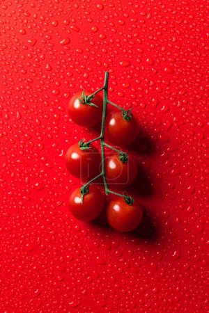 Photo for Elevated view of cherry tomatoes on red surface with water drops - Royalty Free Image