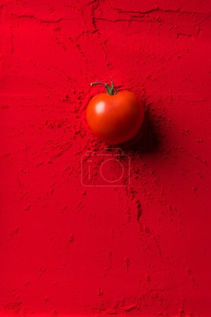 top view of red tomato on red powder