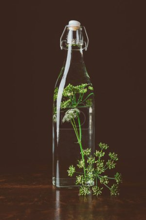 glass bottle with water and dill on wooden table on black