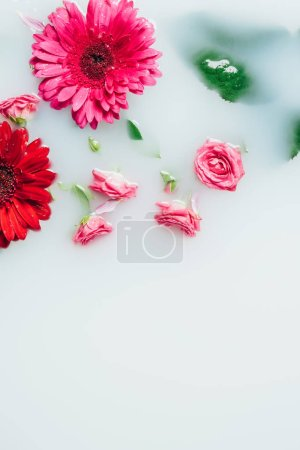 top view of beautiful roses and gerbera flowers with green leaves in milk backdrop