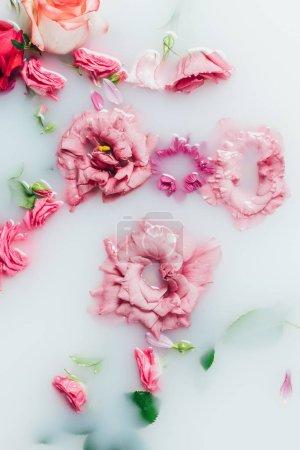 top view of arranged beautiful pink roses and chrysanthemum flower in milk