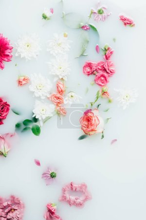 top view of various beautiful colorful flowers in milk background