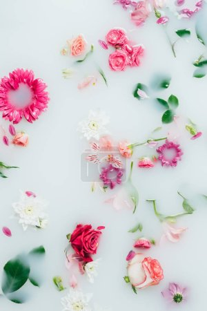 Photo for Top view of various beautiful colorful flowers in milk background - Royalty Free Image