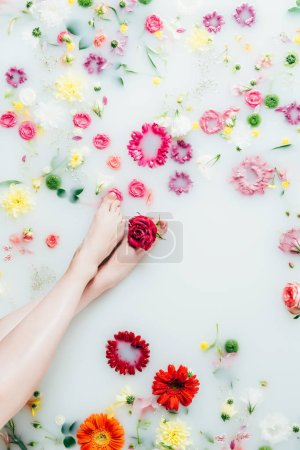 cropped shot of female legs and various arranged beautiful flowers in milk