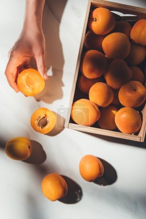 partial view of woman holding piece of apricot with wooden box full of apricots near by on light marble surface