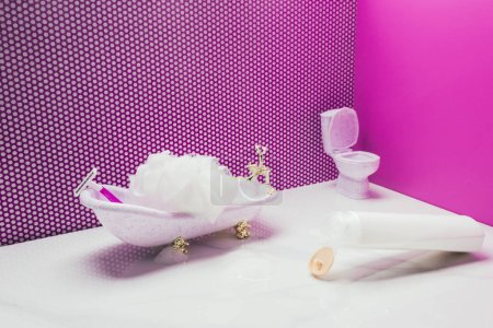 bath and toilet with real size hygiene supplies in miniature bathroom
