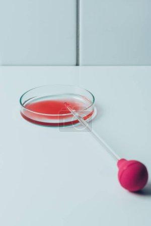 Foto de Médico pipeta y caja Petri con sangre en mesa blanca - Imagen libre de derechos