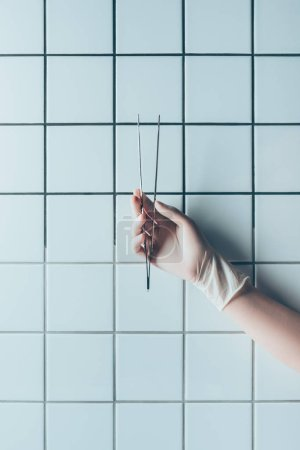 cropped shot of doctor in glove holding tweezers in front of tiled white wall