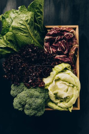 top view of different cabbages and salads in wooden box on grey dark table