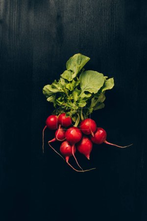 Photo for Top view of radishes on grey dark table - Royalty Free Image